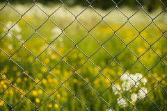 Metal grid. fence mesh. fencing plot net. zinc mesh fence. Fencing construction site. protection of the site fence. metal wire fence. not expensive fence royalty free stock photos