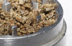 Metal grinder with marijuana Stock Image