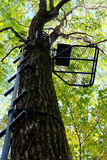 Metal Hang-on Hunting Treestand and Climbing Sticks Royalty Free Stock Photography