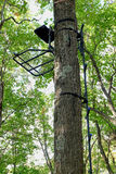 Metal Hang-on Hunting Treestand and Climbing Sticks Stock Images