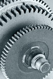 Metal industrial gear cogwheel for machinery closeup Royalty Free Stock Images