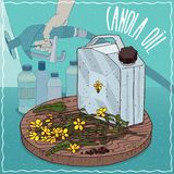Canola oil used for fuel production. Metal Jerrycan of Canola oil and flowers and seeds of Canola plant. Filling at gas petrol station. Natural vegetable oil vector illustration