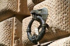Metal l'anello nel becco di un uccello fotografie stock libere da diritti