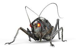 Metal l'insetto del robot isolato su bianco con il percorso di ritaglio, il illu 3D Fotografia Stock Libera da Diritti