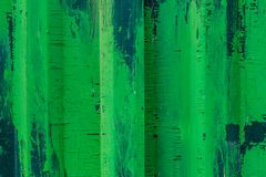 Metal la cerca con la pintura verde y blanca, fondo, textura fotos de archivo libres de regalías