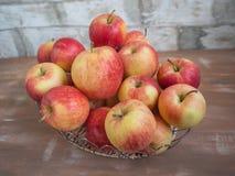 Metal la cesta con el primer maduro de las manzanas de la cosecha grande foto de archivo