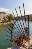 Metal la grille avec des serrures d'amour sur Ile de la Cite à Paris, France Photographie stock libre de droits