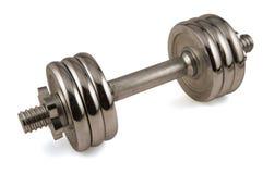 Metal la pesa de gimnasia Imagen de archivo libre de regalías