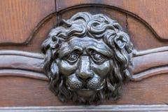 Metal la pista del león Imagenes de archivo