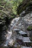 Metal ladder in Canyon Piecky in Slovenský raj Slovak Paradise National Park Royalty Free Stock Photos