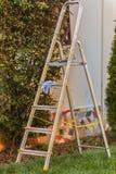 metal ladder on garden Stock Photos