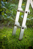 Metal ladder standing on grass at garden Royalty Free Stock Photo