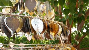 Metal leaves with wishes near temple. Rack with traditional metal leaves with wishes located near tree in yard of temple. In Thailand stock video footage