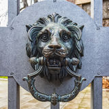 Metal Lion Head Knocker Royalty Free Stock Image
