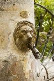 Metal lion head spout Stock Photography