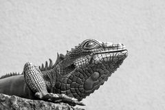 Metal lizard of gray color. The metal figure of a lizard from silver is located separately on a gray background Royalty Free Stock Images