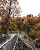 Metal Lookout Surrounded by Autumn Trees Stock Image