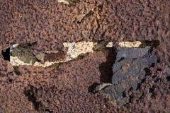 Metal marcado con hoyos 2 Fotos de archivo