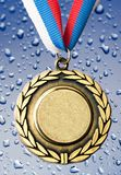 Metal medal with tricolor ribbon Stock Images