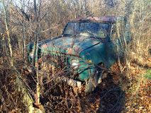 Vintage Truck. Rusty truck in woods vintage old vehicle Royalty Free Stock Photos