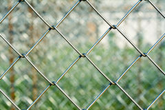 Metal mesh with blurred background, Royalty Free Stock Image