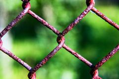 Metal mesh fence with a green blurred background. Is close stock photos