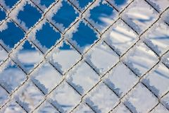 Metal mesh in the hoarfrost. Texture, background Stock Image
