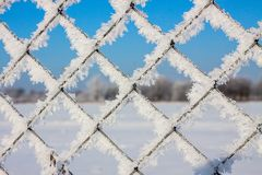 Metal mesh in the hoarfrost. Texture, background Royalty Free Stock Photography
