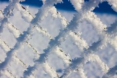 Metal mesh in the hoarfrost. Texture, background Stock Photos