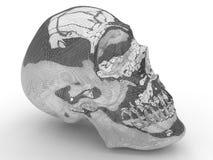 Metal mesh human skull vector illustration