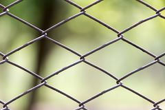 Metal mesh in nature as a background.  Royalty Free Stock Images