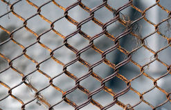 Metal mesh texture with rust Royalty Free Stock Photo