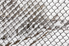 Metal mesh in the winter Royalty Free Stock Photo