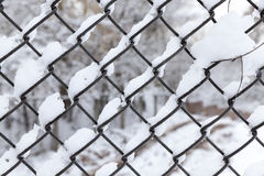 Metal mesh in the winter Stock Image
