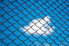 Metal mesh wire fence Stock Photo