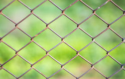 Metal mesh wire fence Royalty Free Stock Photo