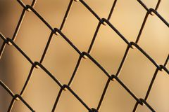 Metal mesh wire fence. Close-up on bokeh effect background Stock Images