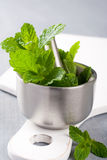 Metal mortar and pestle with fresh mint Stock Images