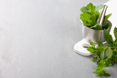 Metal mortar and pestle with fresh mint Royalty Free Stock Photo