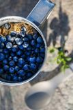 A metal mug full of blueberries with oatmeal, on a stone in the woods stock images