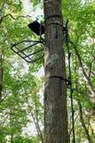 Metal Na Tropić Treestand i pięcia kije obrazy stock