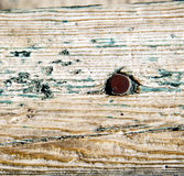 Metal nail dirty stripped paint in the brown red wood door and. Stripped paint in the blue wood door and rusty nail stock illustration