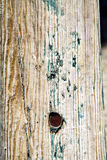 Metal nail green in the brown red wood door and. Stripped paint in the blue wood door and rusty nail stock photos