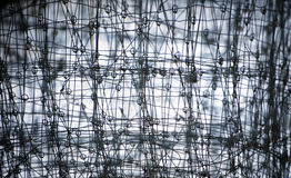 Metal net Stock Images