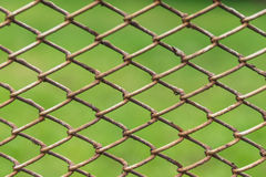 Metal net with Royalty Free Stock Photos