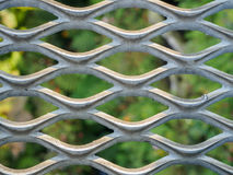 Metal net with green blured background. Stock Photo