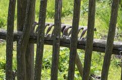 Metal o ancinho que encontra-se na cerca de madeira musgoso Foto de Stock