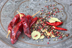 Metal o moedor da especiaria com pimentas encarnados e folha de louro Fotos de Stock