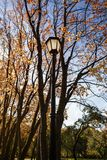 Metal old lantern in the park. Metal old lantern on the background of the autumn trees Royalty Free Stock Image