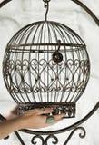 Metal ornate birdcage Royalty Free Stock Image